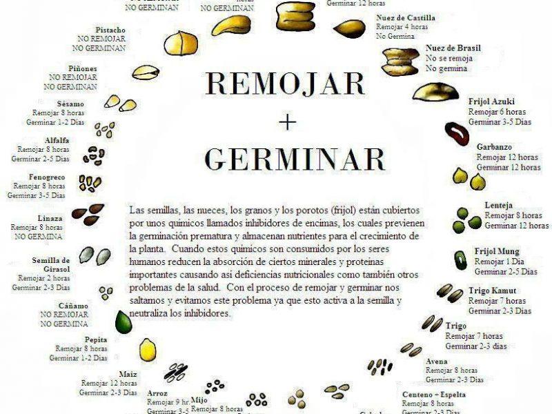 Activación de frutos secos y semillas